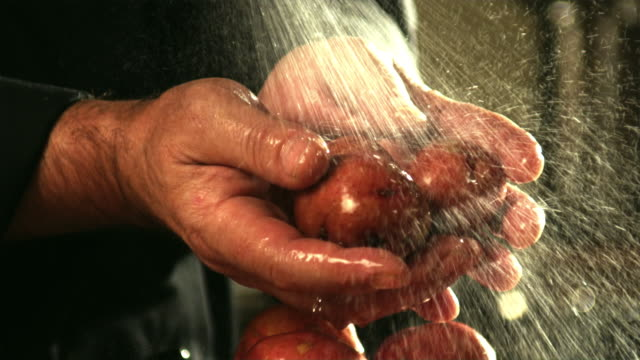 SLO MO, CU, Man's hands washing potatoes