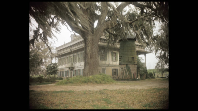 mansion surrounded by trees covered in spanish moss - 1960's - southern usa stock videos & royalty-free footage