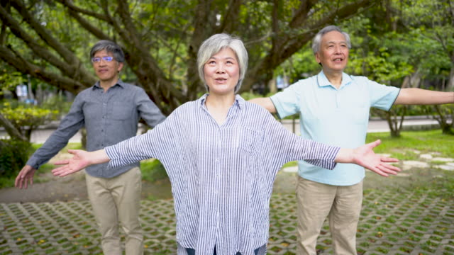 mantra for happy old age - equilibrio video stock e b–roll