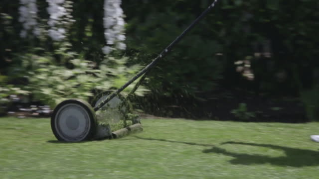 ms pan manual lawn mower mowing  / portland, oregon, united states  - only mature men stock videos & royalty-free footage