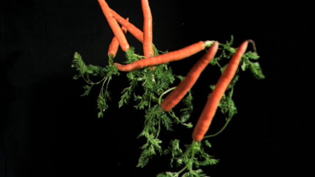 many carrots in super slow motion coming up - möhre stock-videos und b-roll-filmmaterial