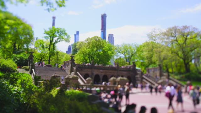 vídeos de stock e filmes b-roll de many growing fresh green leaf trees surrounded people around the bethesda terrace in central park at new york city ny usa on may 06 2019. - fonte bethesda