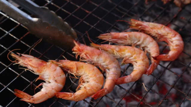 many kinds of seafood - prawn seafood stock videos & royalty-free footage