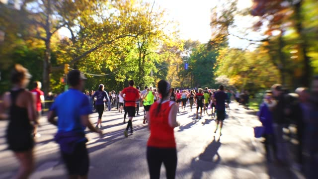 vídeos de stock e filmes b-roll de many new york city marathon runners run on the park road, which are surrounded by autumn color trees at central park new york ny usa on nov. 04 2018. - maratona