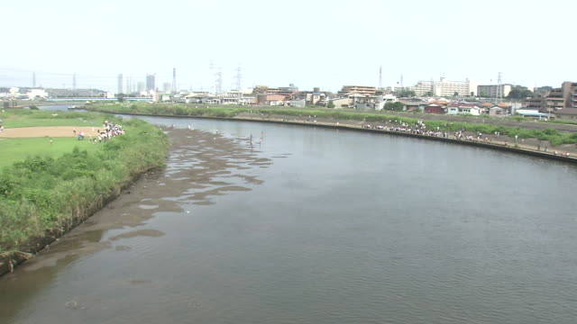 many onlookers at tsurumi river, kanagawa, japan - bearded seal stock videos & royalty-free footage