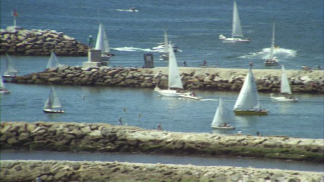 ms pan many sailboats in lagoon at establish coastal city (marina del rey) - 1980 stock videos and b-roll footage