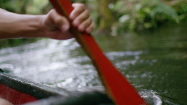 maori oar rowing - minority groups stock videos & royalty-free footage