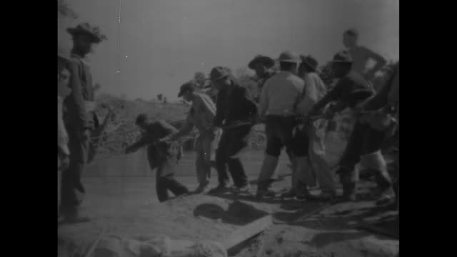 maori village in new zealand / men pulling a rope in unison / a man stands atop a flatbed truck as others push / a pontoon crosses river / maori... - māori people stock videos & royalty-free footage