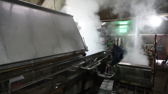 maple syrup production and bottling in southern ontario at the wagler maple products farm in wellesley ontario canada on friday march 2 2018 - maple stock videos & royalty-free footage
