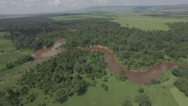 Mara River Aerial 4K