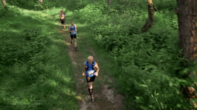 AERIAL Marathon participants running across forest clearing