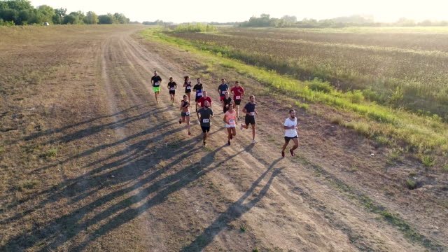marathon race - cross country running stock videos & royalty-free footage