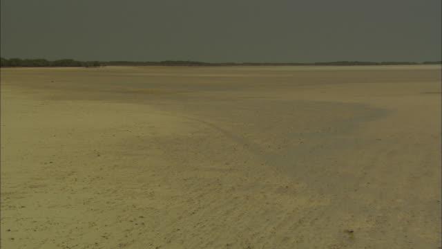 Marawah Marine Protected Area, island, scenic establishing shot Abu Dhabi, United Arab Emirates