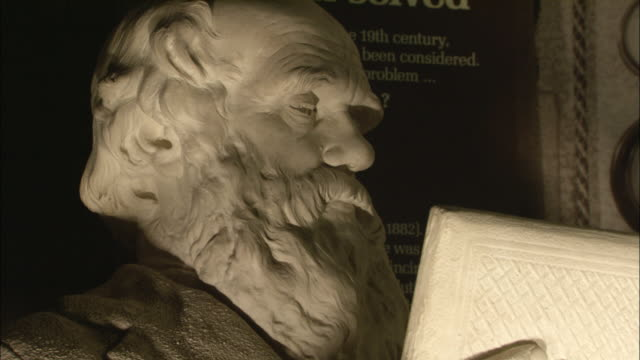 a marble statue depicts charles darwin reading a book. - marble stock videos & royalty-free footage