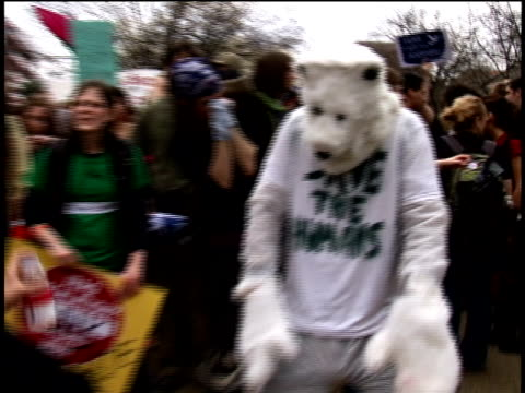 vidéos et rushes de march 19 2008 ms person dressed as polar bear dancing at antiwar protest/ washington dc - dancing bear
