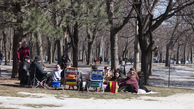 march 21st was uncharacteristically warm and people accordingly flooded the streets and parks of the city amidst melting snow to enjoy the sun.... - bare tree stock videos & royalty-free footage