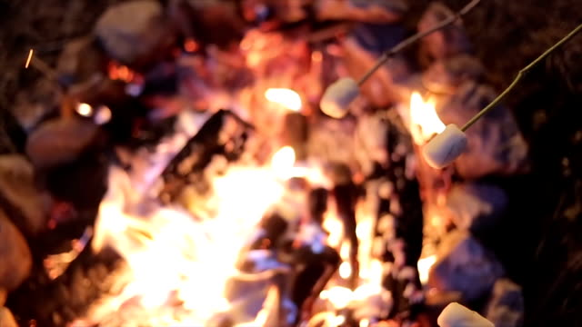 march mallow on the campfire,close up - marshmallow video stock e b–roll