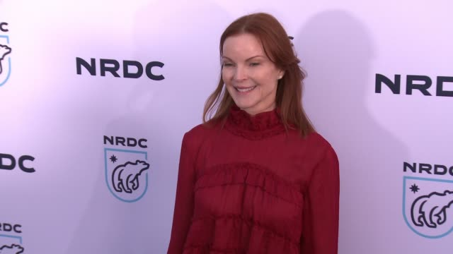 marcia cross at nrdc stand up for the planet la 2017 in los angeles ca - national resources defense council stock videos & royalty-free footage