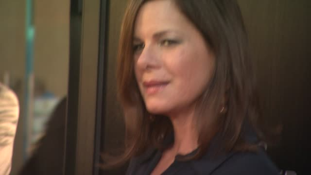 marcia gay harden at hbo's 'the newsroom' premiere at arclight cinemas marcia gay harden at arclight cinemas cinerama dome on june 20 2012 in... - cinerama dome hollywood stock videos and b-roll footage