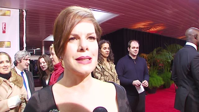 marcia gay harden on her dress, on what she loves most about award shows at the broadcast film critics association's 2007 critic's choice awards at... - ブロードキャスト映画批評家協会点の映像素材/bロール