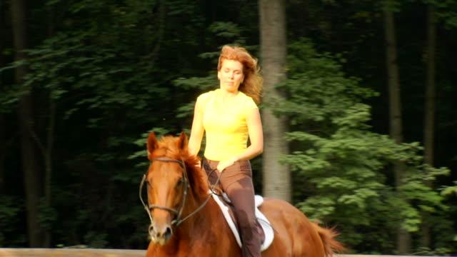 marcia's horse - cu approach - galoppera bildbanksvideor och videomaterial från bakom kulisserna