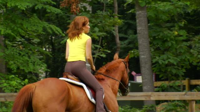 Marcia Pferd Gehminuten von links nach rechts, 2