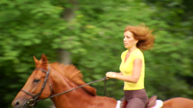 Marcia's Med Gallop Right Left 1080