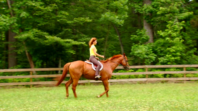 marcia's wide trot right left 1080 - all horse riding stock videos and b-roll footage