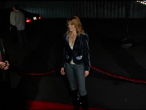 marg helgenberger at the csi 100th episode party at santa monica airport in santa monica, california on november 13, 2004. - marg helgenberger stock videos & royalty-free footage