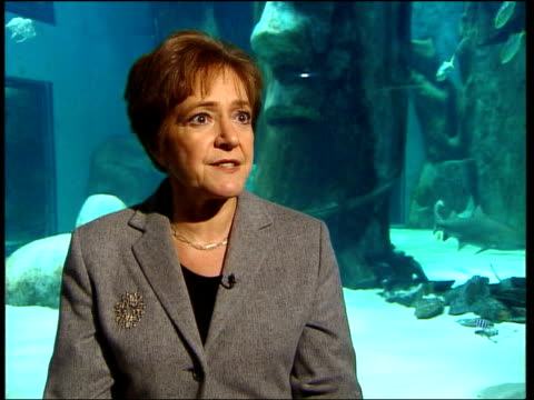 margaret hodge mp interview sot he's talking about freezing fares massively increasing rail transport bringing conductors back on buses/ when he... - マーガレット・ホッジ点の映像素材/bロール
