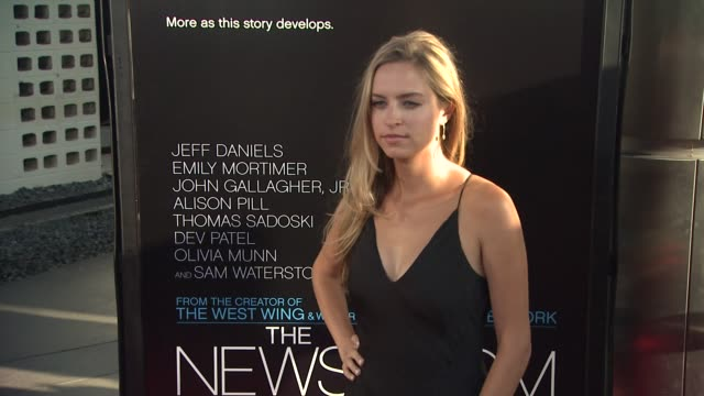 margaret judson at hbo's 'the newsroom' premiere at arclight cinemas margaret judson at arclight cinemas cinerama dome on june 20 2012 in hollywood... - cinerama dome hollywood stock videos and b-roll footage