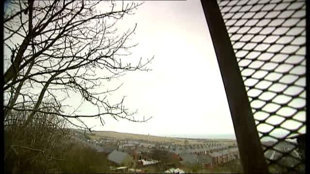 vídeos y material grabado en eventos de stock de margaret thatcher death: impact of 1980s miners' strike: report from easington; england: county durham: durham coast: easington: ext wide shot site... - bare tree