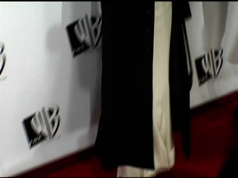 maria bello at the 2005 critics' choice awards at the wiltern theater in los angeles, california on january 10, 2005. - maria bello stock videos & royalty-free footage