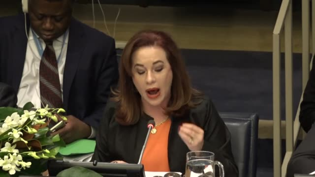 maria fernanda espinosa, president of the 73rd session of the united nations general assembly speaks at 8th global forum of the united nations... - united nations general assembly stock videos & royalty-free footage