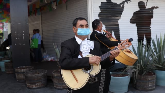mariachi musician plays the guitar wearing a protective mask as the band maricahi cultural perform during a recording at the museo del tequila y el... - cactus stock videos & royalty-free footage