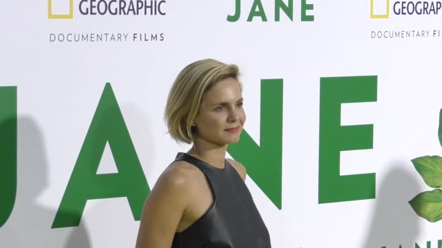 mariana van zeller at the premiere of national geographic documentary films' 'jane' at the hollywood bowl on october 09, 2017 in los angeles,... - ドキュメンタリー映画点の映像素材/bロール