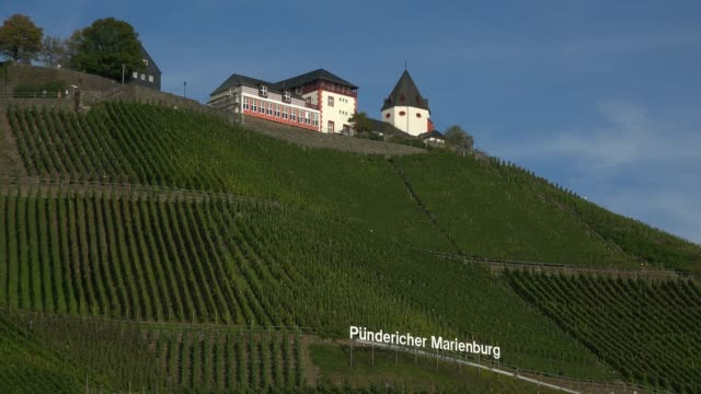 marienburg castle near puenderich, moselle river, rhineland-palatinate, germany, europe - western script stock videos & royalty-free footage