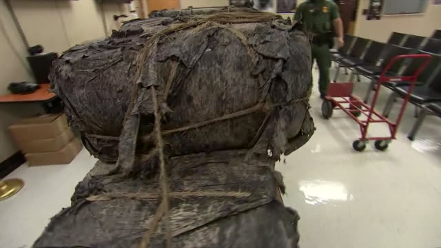 marijuana bundles displayed that were smuggled across the rio grande river at the us / mexico border. - crime or recreational drug or prison or legal trial 個影片檔及 b 捲影像