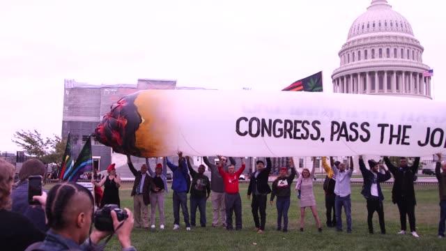 marijuana protest at the capitol - marijuana cannabis video stock e b–roll