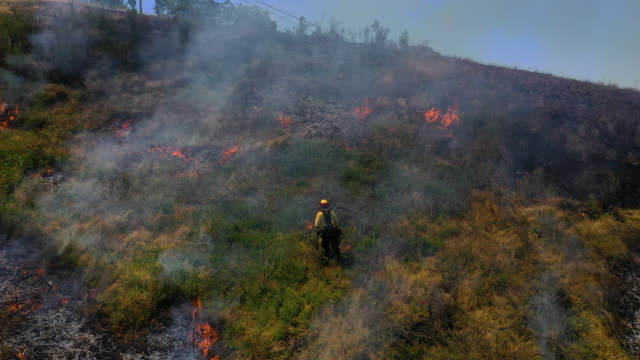 marin county fire department firefighters participate in a controlled burn training on june 19, 2019 in san rafael, california. firefighters with... - fire engine stock videos & royalty-free footage