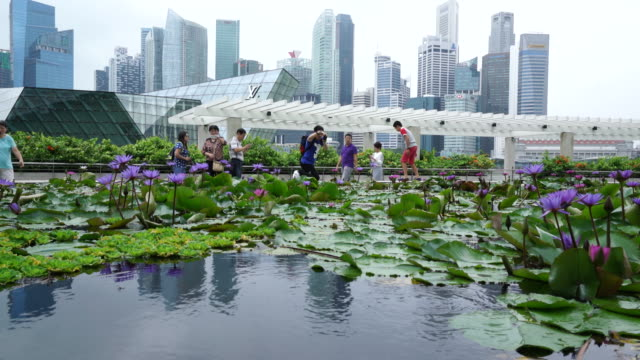 marina bay, singapore - bay of water stock videos & royalty-free footage