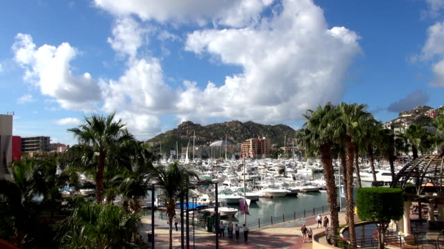 marina - cabo san lucas, mexico - baja california peninsula stock videos & royalty-free footage