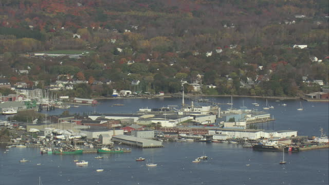 aerial marina, docks, and port facilities with sailboats anchored in harbor and fall trees beyond / rockland, maine, united states - anchored stock videos & royalty-free footage