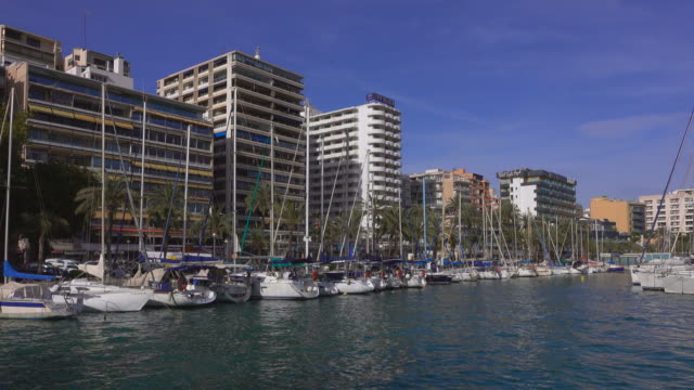 marina port de palma, palma de mallorca, majorca, balearic islands, spain - jachthafen stock-videos und b-roll-filmmaterial