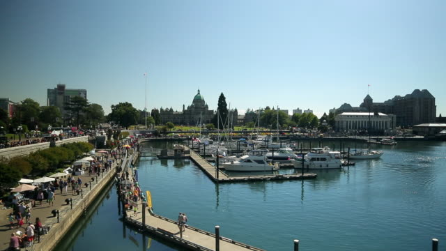 A marina with a view of the Parliament of British Columbia