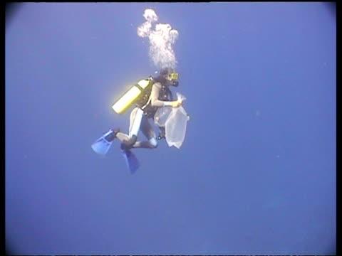 ms marine biologist scuba diving in blue water, layang layang, malaysia - 潜水ボンベ点の映像素材/bロール