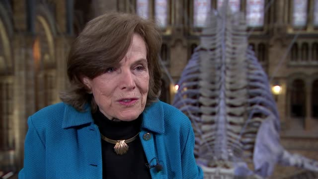 Marine biologist Sylvia Earle issues warning on threat to ocean life Dr Sylvia Earle interview SOT
