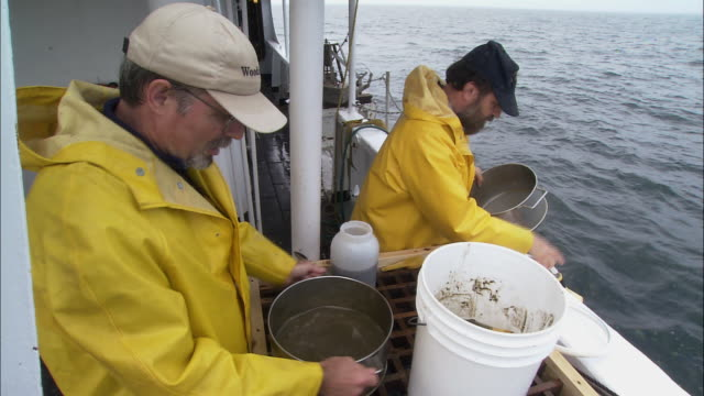 HA Marine biology researchers sieving samples of sand from Georges Bank / Maine, United States