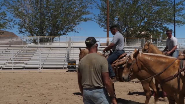 stockvideo's en b-roll-footage met marine corps mounted color guard based in barstow california travel the country participating in ceremonies - omsloten ruimte