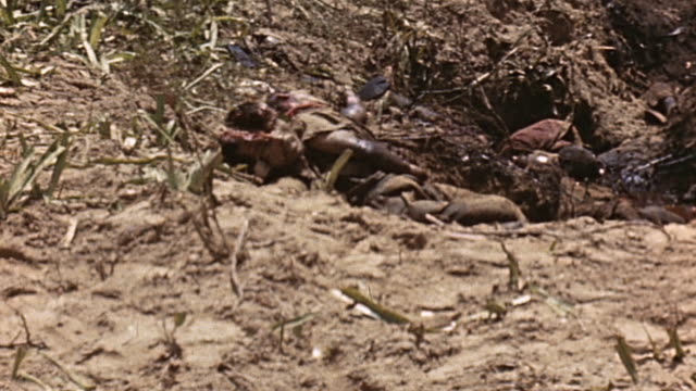 marine infantry advancing cautiously and hitting the ground as grenade explodes beyond, and japanese casualty lying where he fell / saipan, mariana... - guerra del pacifico video stock e b–roll